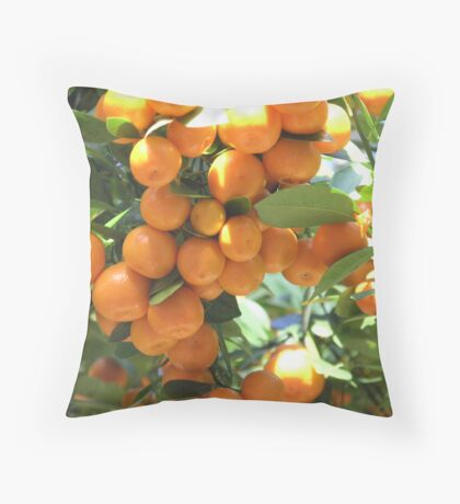 Hybrid Oranges Throw Pillow