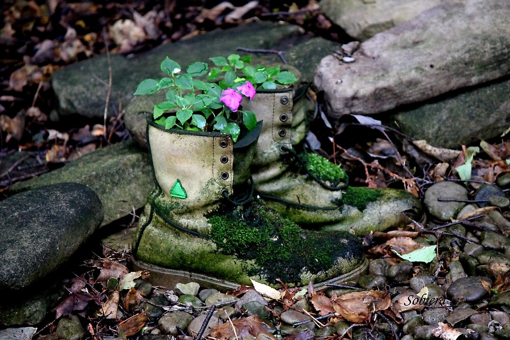 Beleaguered Boots by Rosemary Sobiera