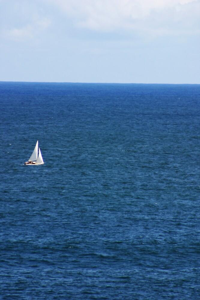 The Sailboat by Van Deman Design