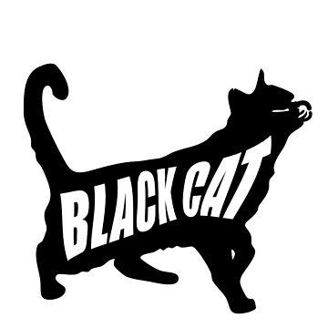 Black cat by rafo