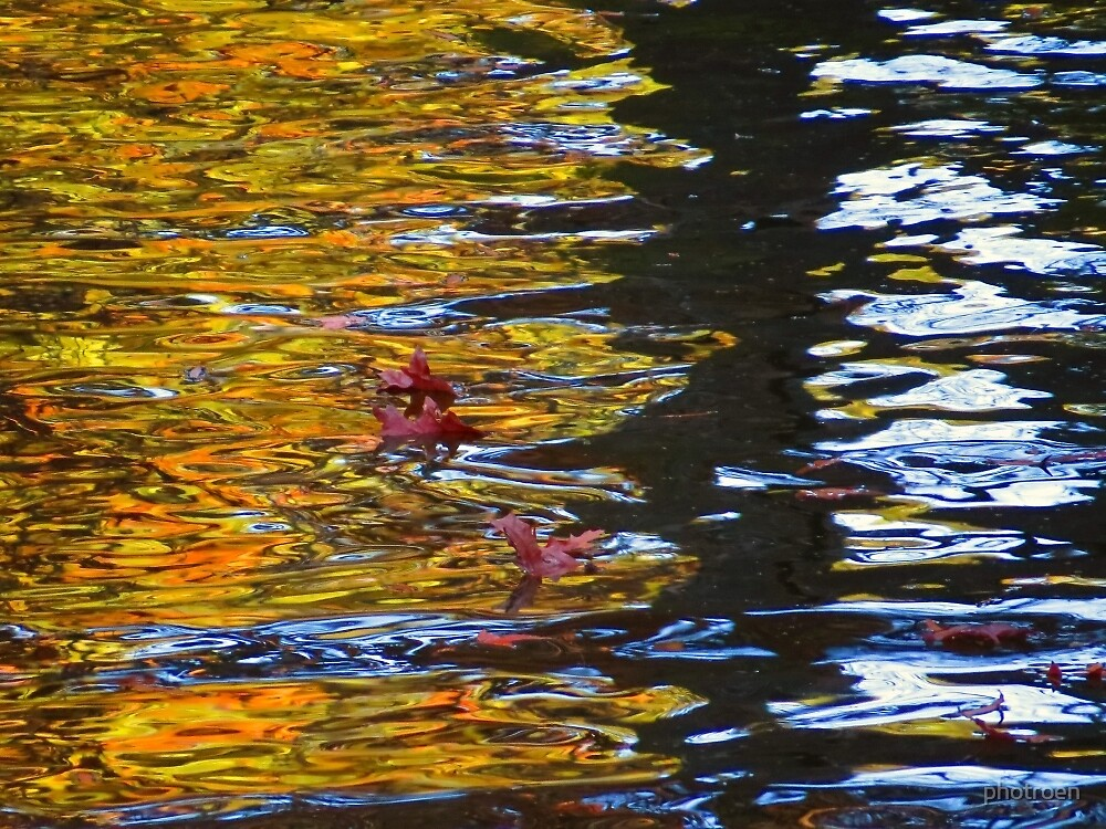 Enchanted Pond II  (1430118847VA) by photroen