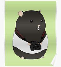 Hamster Photographer Poster