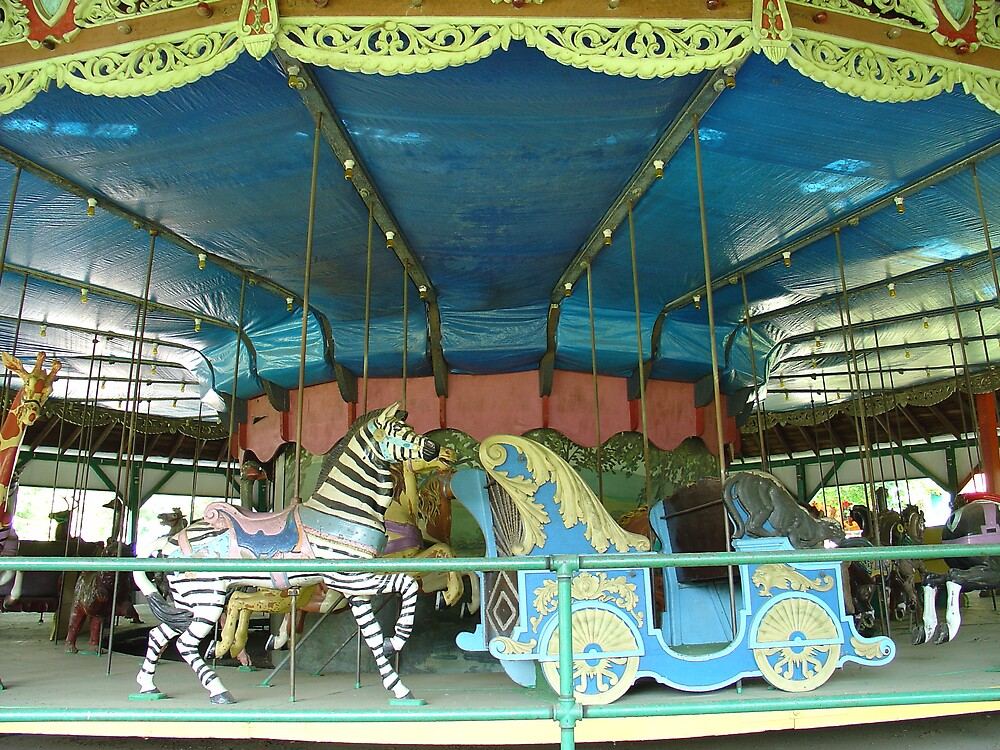 Grove carousel 2 by suelucat