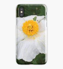 Matilija Poppy iPhone Case/Skin