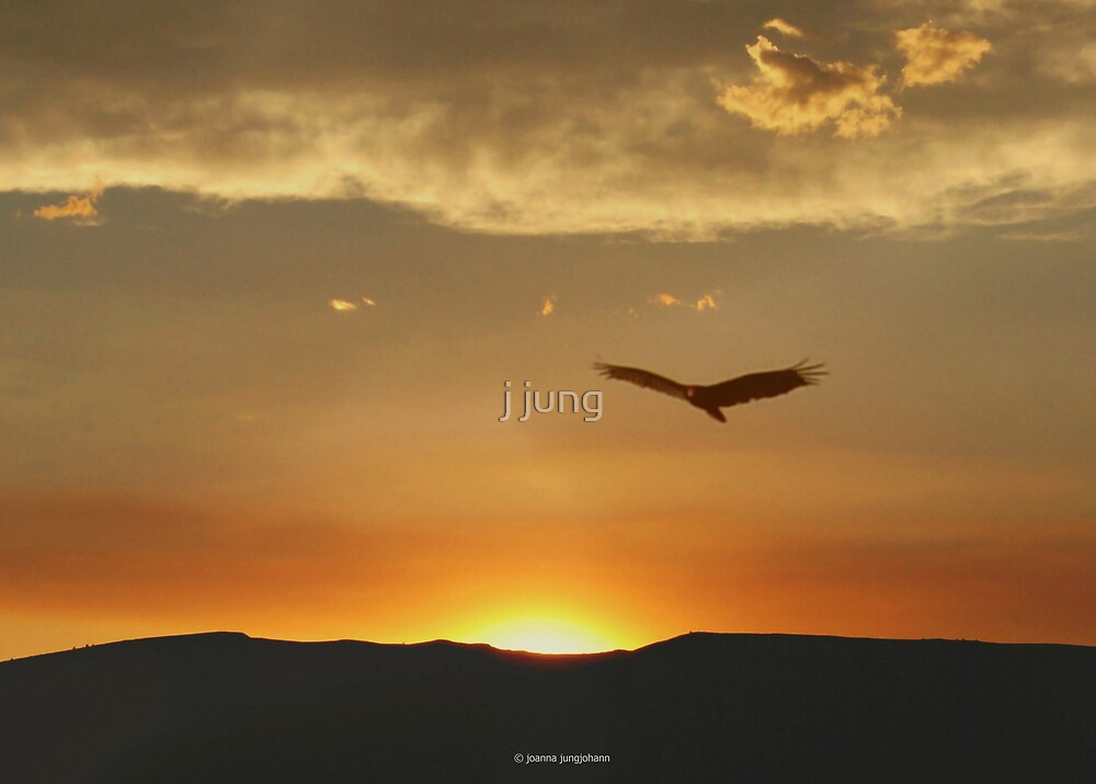 On Eagles Wings by j jung