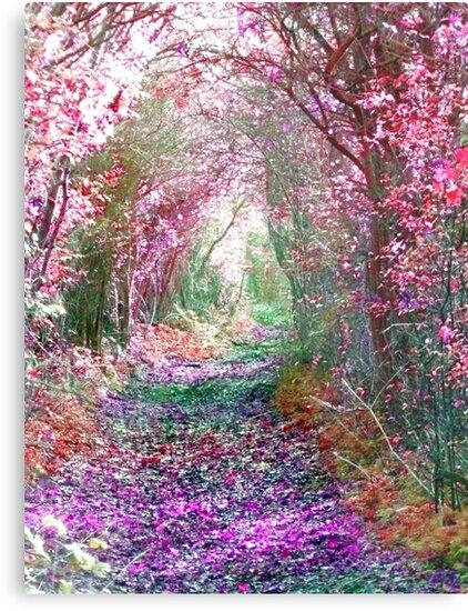 Secret Garden by Vicki Spindler (VHS Photography)