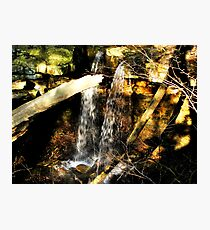 Shadows on the Falls Photographic Print
