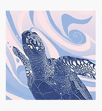 Unique Turtle Design  Photographic Print