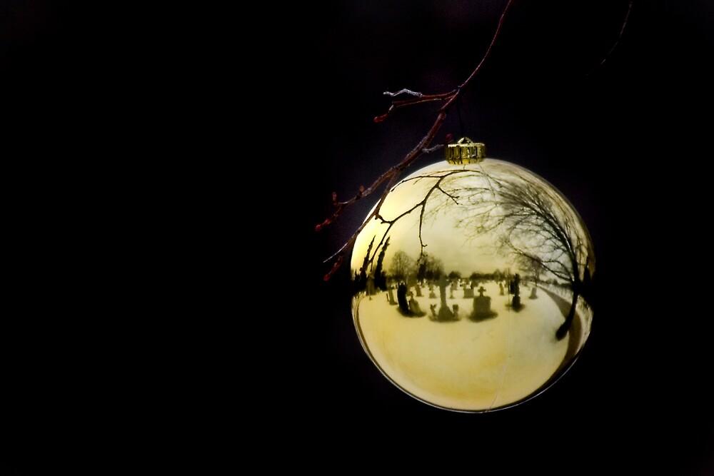 Seasons Grievings by Carl Chalupa