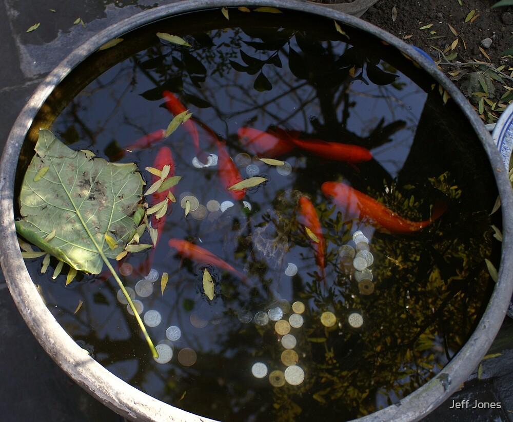 Lucky Fish by Jeff Jones
