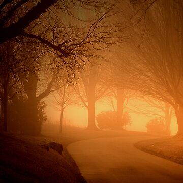 The Fog by JPac