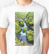 Moine Creek T-Shirt