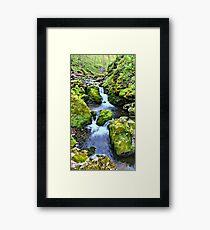 Moine Creek Framed Print