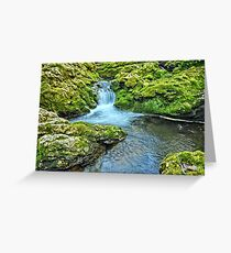 Mossy Moine Falls Greeting Card