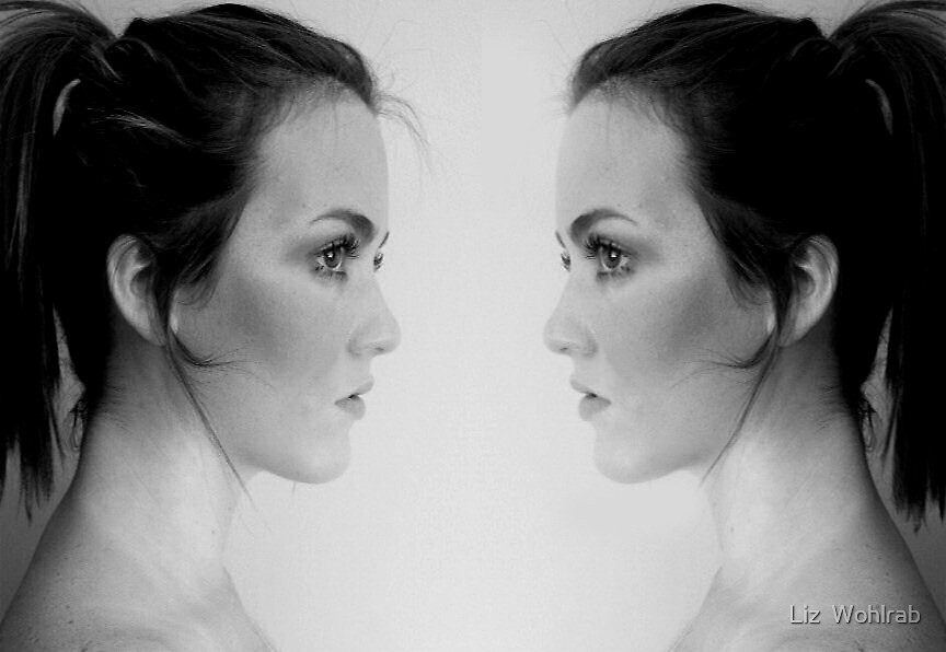 Twin Reflection  by Liz  Wohlrab