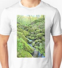 Above Moine Creek 2 T-Shirt