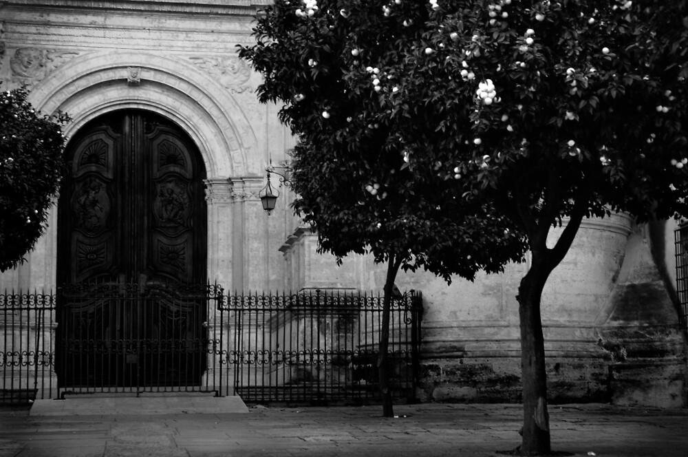 Spanish Door by trulyshannon
