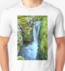 Moine Creek Goes Vertical T-Shirt
