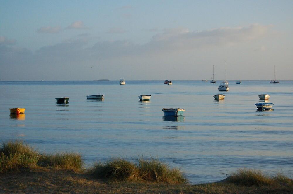 Boats at Cameron's Bight. by Brett Wakeman