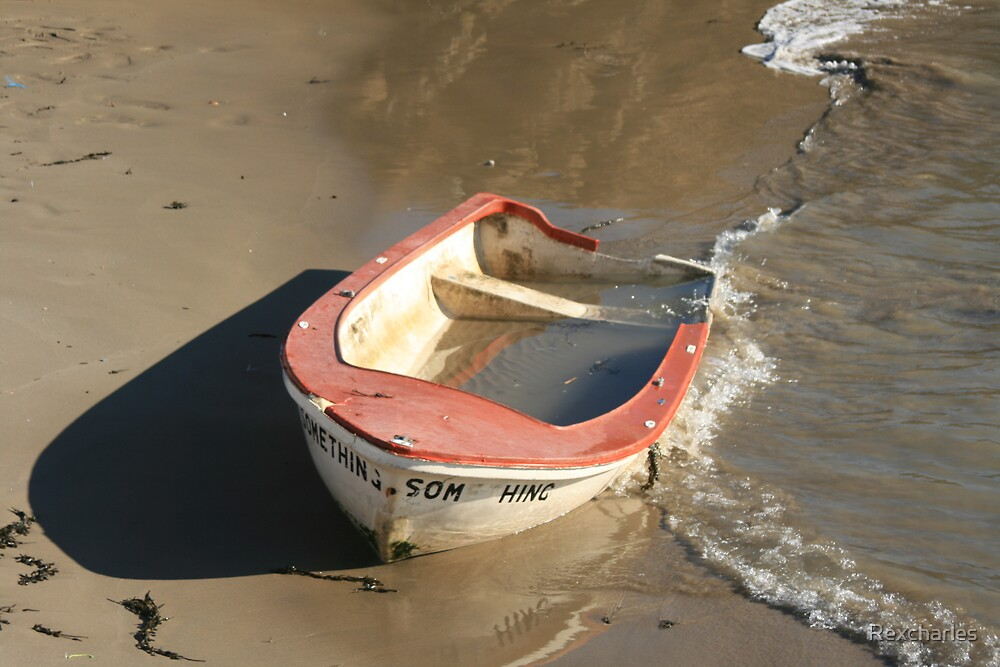 ABANDON  DINGHY by Rexcharles