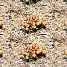 Mt Annan Daisies by KazM