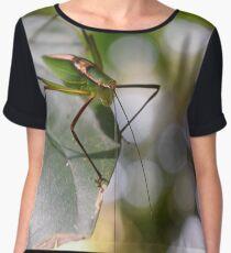 Insect Women's Chiffon Top