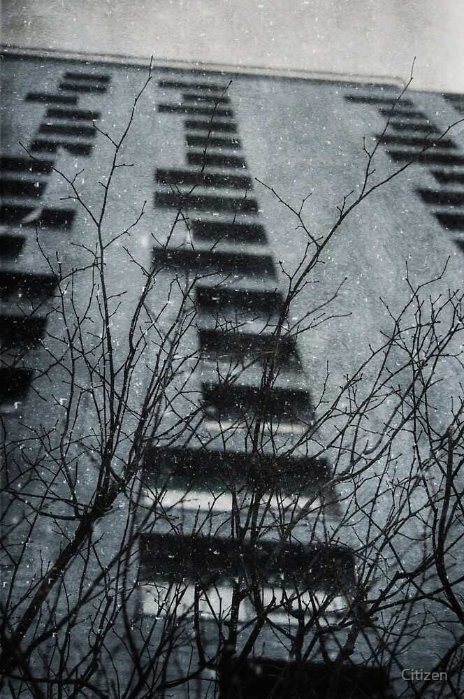 Winter Series Tower Block by Nikki Smith