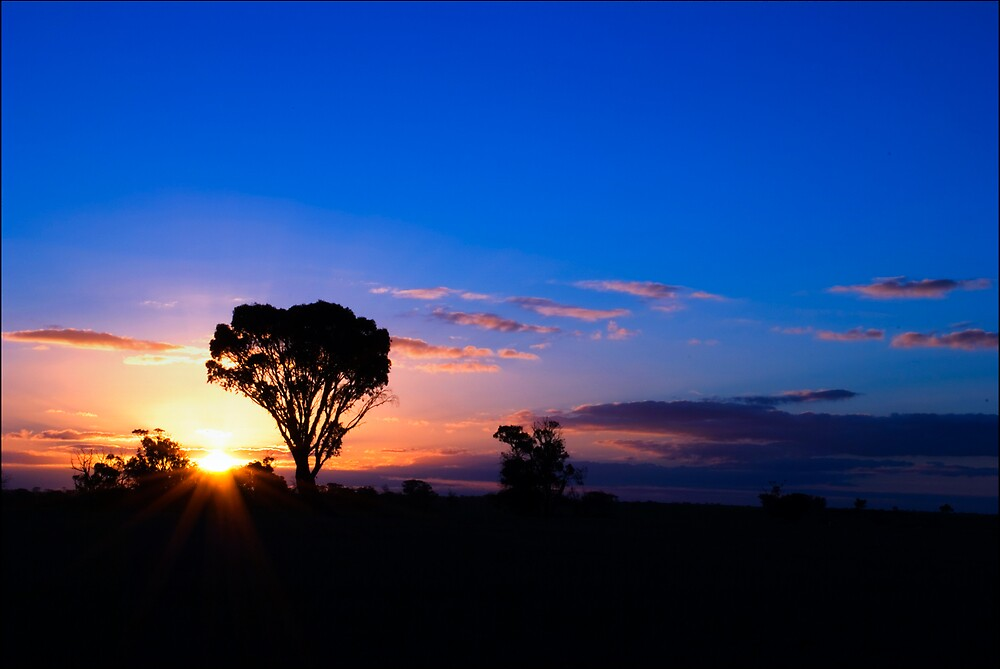 Stirling Ranges by Damiend