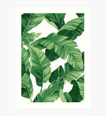 Tropical banana leaves II Art Print