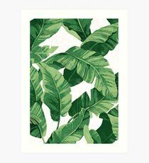 Tropical banana leaves II Kunstdruck