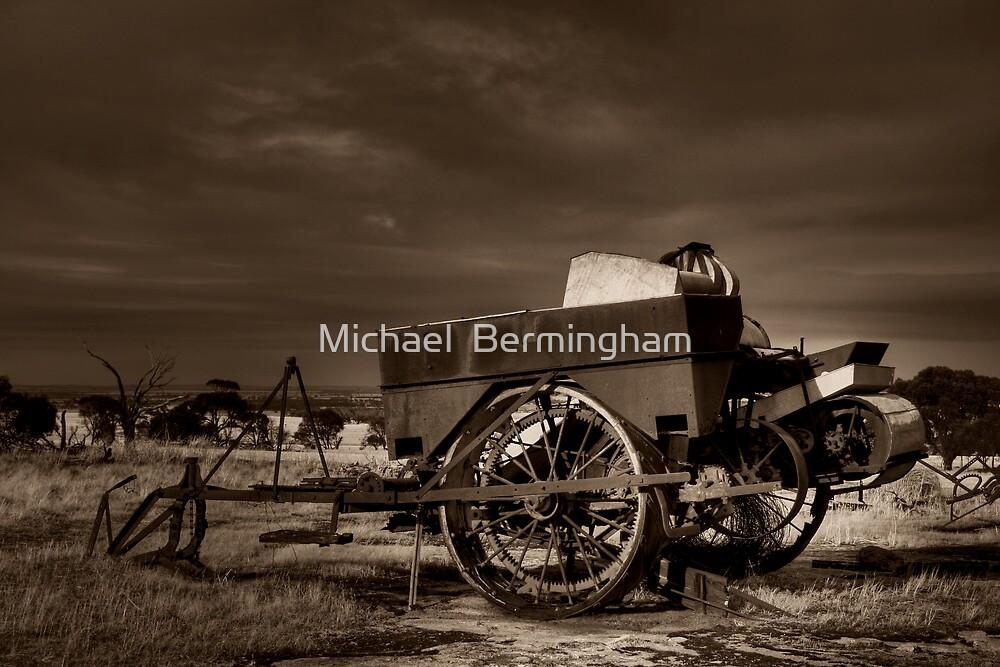 Superseded by Michael  Bermingham