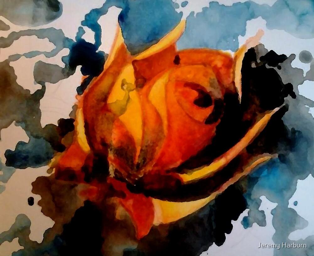 yellow rose by Jeremy Harburn