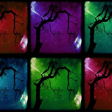Colour Tree by hoops