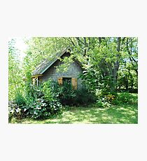 Country Garden Shed Photographic Print