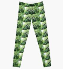 Country Garden Shed Leggings