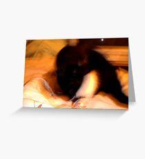 Dimensional Cat Greeting Card