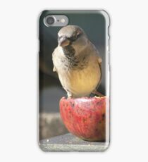 Sparrow....Big brother is watching........!! iPhone Case/Skin