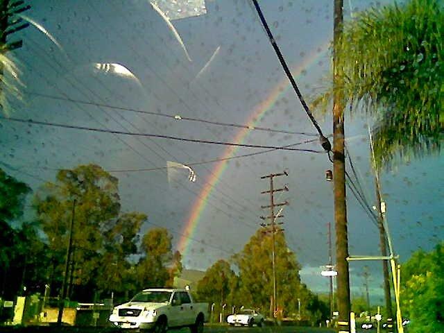 rainbow by picxz