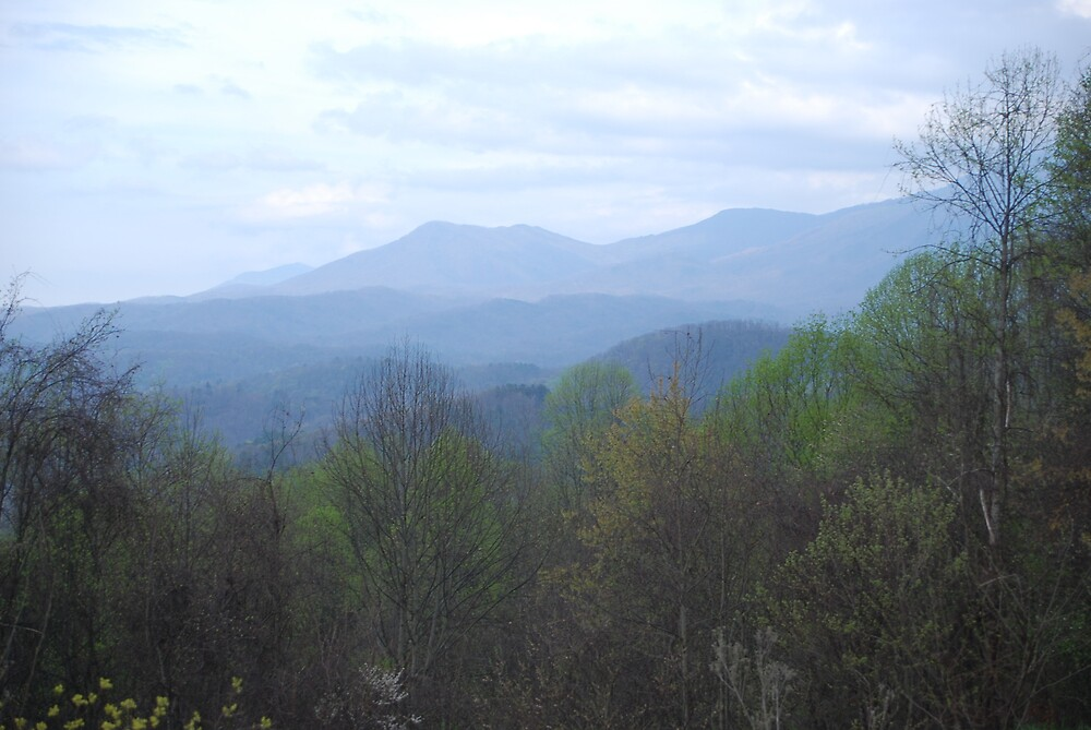 Smokey Mountain View by twigglesworth