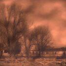 Foggy morning..... by Rhonda Ford