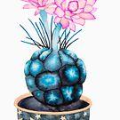 «Flor suculenta» de Ruta Dumalakaite