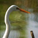 Egret 2  by D-GaP