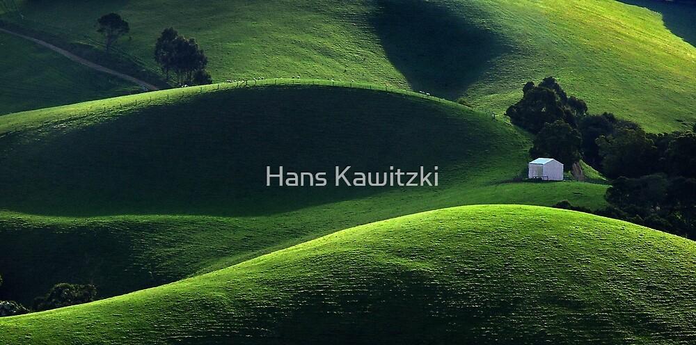 1520 Light and Shade - Gippsland by Hans Kawitzki