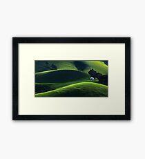 1520 Light and Shade - Gippsland Framed Print