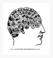 phrenological organs symbolically - gift idea Photographic Print