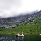 Kirkefjorden, Norway by metronomad