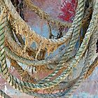 Old Ropes Can Be Beautiful by Alexandra Lavizzari