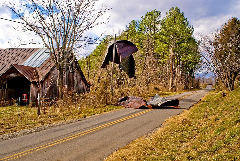 Windy Day by Rod  Adams