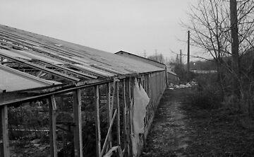 greenhouse in ontario by chrisfurlinger