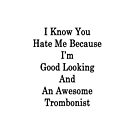 I Know You Hate Me Because I'm Good Looking And An Awesome Trombonist  by supernova23